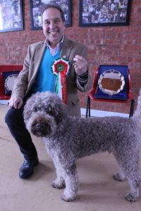 Show Lagotto of the Year 2018