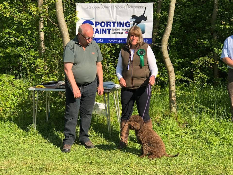 GUNDOG SEWSSC Assessment May 2018