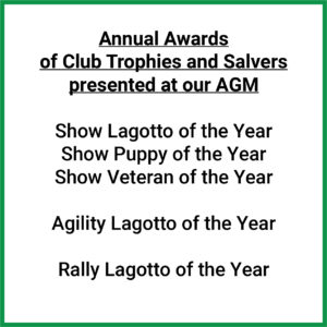 annual awards list LINK