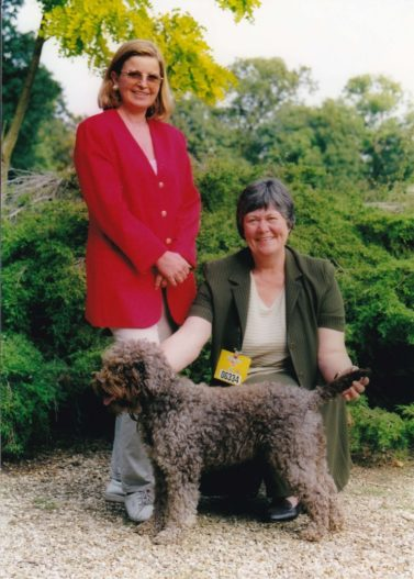 History of Lagotto in the UK Fred at Eagle Cottage